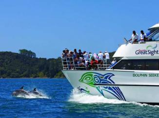 Dolphin Seeker