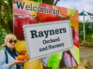 Rayners Orchard